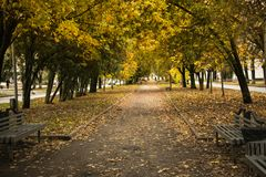 Майна парка в падении Стоковое Изображение RF