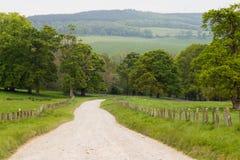 Майна страны водя через зеленый луг в Ирландии Стоковые Фотографии RF