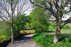 Майна страны в Perthshire, Шотландии стоковое изображение