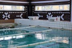 Майны заплывания в бассейне Стоковые Изображения