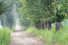 майны страны Стоковая Фотография RF