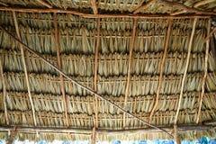 Майяская крыша потолка palapa с пальмой Стоковое Фото