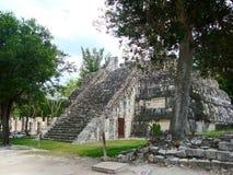 Майяская культура Мексика Pyramide руин chitzen itza yucatan Стоковое Изображение