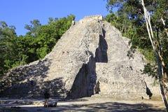 Майяская пирамида в Coba Стоковое Изображение