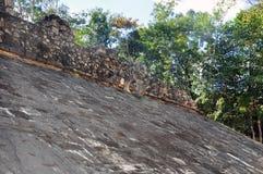 Майяская пирамида, Coba, Мексика Стоковые Изображения RF