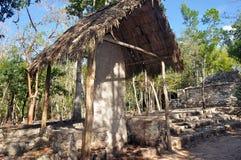 Майяская пирамида, Coba, Мексика стоковые изображения