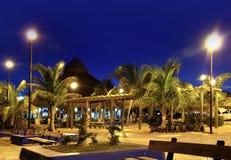 майяские валы riviera puerto ладони ночи morelos Стоковое Фото