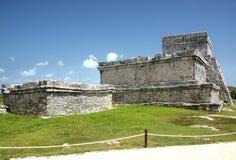майяские руины Мексики Стоковые Изображения RF