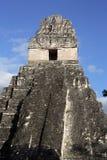 майяские руины Стоковое фото RF