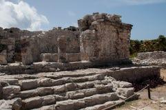 Майяские руины стоковые изображения