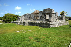 Майяские руины Стоковое Изображение RF