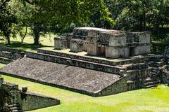 Майяские руины Copan, Гондураса стоковые изображения rf