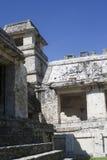 майяские руины palenque Стоковые Фото
