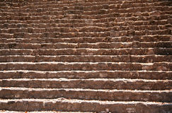 майяские шаги руины Стоковая Фотография RF
