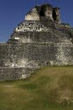 майяский висок стоковые фото