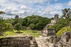 Майяский висок II на национальном парке Tikal - Гватемале Стоковое Изображение RF