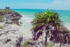 Майяский океан Мексики tulum руин Стоковое фото RF