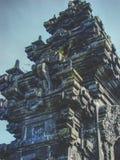 Майяское здание стоковые фотографии rf