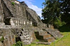 майяское xunantunich руин Стоковое Изображение
