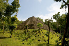 майяское yaxha руин Стоковое фото RF