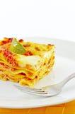 макаронные изделия lasagne классицистической тарелки casserole итальянские Стоковое фото RF