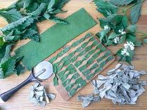 Макаронные изделия крапивы зеленые Стоковая Фотография RF