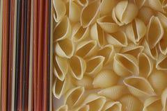 Макаронные изделия Tricolors, итальянские макаронные изделия, регулярн макаронные изделия, мини макаронные изделия раковин, Стоковые Изображения RF