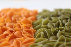 Макаронные изделия Tricolors, итальянские макаронные изделия, регулярн макаронные изделия, мини макаронные изделия раковин, Стоковые Фотографии RF