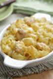 макарон цыпленка сыра стоковые изображения