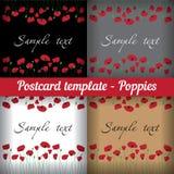 Маки Комплект шаблонов для открыток флористических Стоковое Изображение