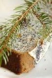 маковое семеня торта Стоковое фото RF