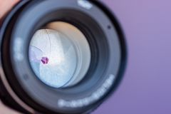 Макрос апертуры объектива фотоаппарата с отражениями стоковое фото rf
