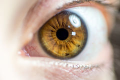 Макрос близкий вверх женского глаза стоковое изображение rf