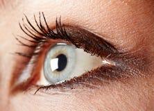 макрос глаза Стоковое Изображение