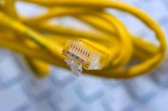 Макрос желтого кабеля сети Стоковое фото RF