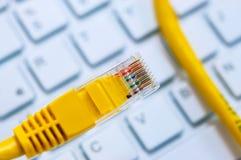 Макрос желтого кабеля сети Стоковые Фотографии RF
