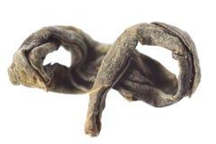 Макрос зеленого чая изолированный Стоковые Фото