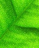 макрос известки листьев Стоковая Фотография RF
