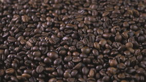 макрос кофе завтрака фасолей идеально изолированный над белизной Руки разбросали кофейные зерна Кофейные зерна касания рук ` s же видеоматериал