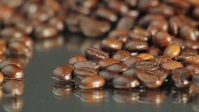 макрос кофе завтрака фасолей идеально изолированный над белизной акции видеоматериалы