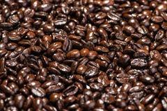 макрос кофе завтрака фасолей идеально изолированный над белизной зажаренный в духовке кофе фасолей предпосылки Стоковые Фотографии RF