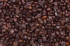 макрос кофе завтрака фасолей идеально изолированный над белизной зажаренный в духовке кофе фасолей предпосылки Стоковое Изображение RF