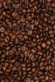 макрос кофе завтрака фасолей идеально изолированный над белизной / Кофейные зерна Стоковые Фотографии RF