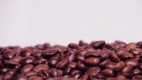макрос кофе завтрака фасолей идеально изолированный над белизной Конец-вверх Вдоль кофейных зерен сток-видео