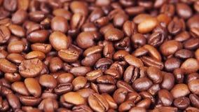 макрос кофе завтрака фасолей идеально изолированный над белизной Конец-вверх Вдоль кофейных зерен Плавать над зажаренным кофе видеоматериал