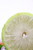 макрос лимона Стоковые Изображения RF