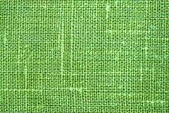 макрос льна зеленый Стоковые Фотографии RF