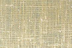 макрос льна Стоковое Фото