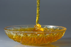 макрос меда золота подачи Стоковое Изображение