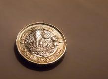 Макрос монетки английского фунта Великобритании Англии изолированный Стоковое фото RF